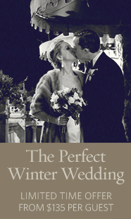 wedding-winter-mini-ad